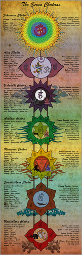 Sharma Satyakam - The 7 Chakras (engl. Text)