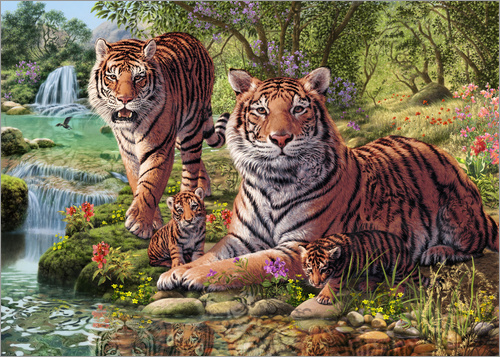 Steve Read - Tiger Clan - Suchbild