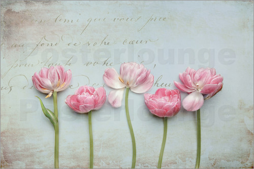 Poster Vintage Tulips