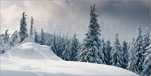 Winter im Gebirge