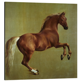 Alubild  Whistlejacket - George Stubbs