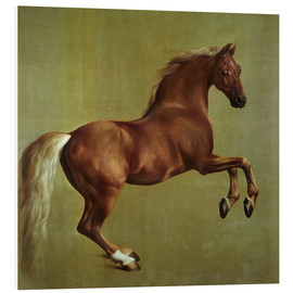 Forex  Whistlejacket - George Stubbs