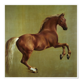Poster  Whistlejacket - George Stubbs