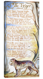 Leinwandbild  Der Tiger (Englisch) - William Blake