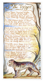 Premium-Poster  Der Tiger - William Blake