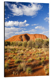 Alubild  Uluru im Outback - David Wall