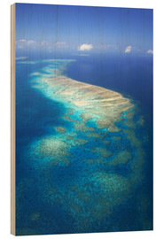 Holzbild  Great Barrier Reef Marine Park - David Wall
