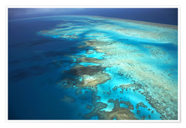 Premium-Poster  Great Barrier Reef Marine Park - David Wall
