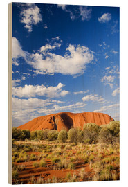 Holzbild  Uluru, Ayers Rock - David Wall