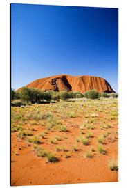 Alu-Dibond  Ayers Rock - David Wall
