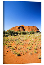 Leinwandbild  Ayers Rock - David Wall