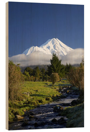 Holzbild  Natur am Mount Taranaki - David Wall