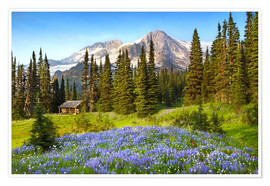 Premium-Poster Wildblumen am Mount Rainier