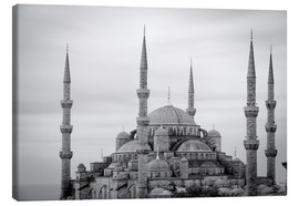 Leinwandbild  the blue mosque in Istanbul / Turkey - gn fotografie