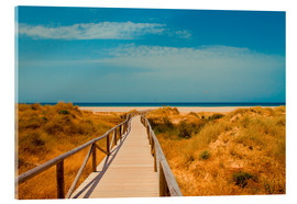 Acrylglas  way to the beach - Tarifa (Andalusia), Spain - gn fotografie