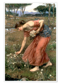 Premium-Poster  Narzisse - John William Waterhouse