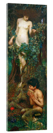 Acrylglasbild  Hamadryade - John William Waterhouse