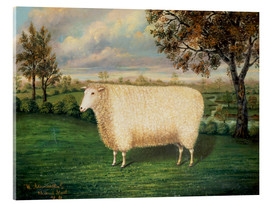 Acrylglas  A Prize Sheep of the Old Lincoln Breed, 1835 - W. Adamson