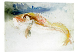 Acrylglasbild  Ein Knurrhahn - Joseph Mallord William Turner