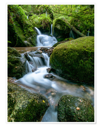 Poster Little Waterfall in Black Forest