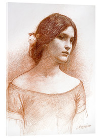 Acrylglasbild  Studie für die Dame Clare - John William Waterhouse