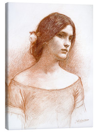Leinwandbild  Studie für die Dame Clare - John William Waterhouse