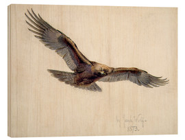 Holzbild  Eagle in flight, 1873 - Joseph Wolf