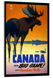 Acrylglasbild  Kanada - big game - Travel Collection