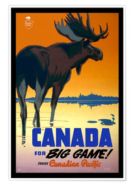 Premium-Poster  Kanada - big game - Travel Collection