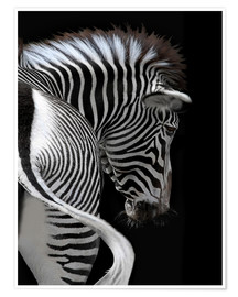 Premium-Poster african stripes II
