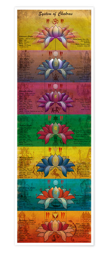Premium-Poster System of Chakras Contrastive View (Englisch)
