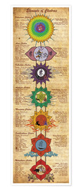 Premium-Poster  Elements of Chakras (engl. Text) - Sharma Satyakam