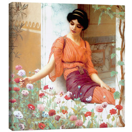Leinwandbild  Sommerblumen - John William Godward