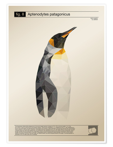 Premium-Poster fig8 Polygonpinguin Poster