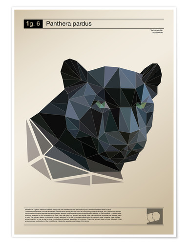 Premium-Poster fig6 Polygonpanther Poster