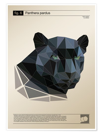 Premium-Poster  fig6 Polygonpanther Poster - Labelizer
