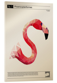 Acrylglasbild  fig3 Polygonflamingo Poster - Labelizer