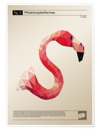 Poster  fig3 Polygonflamingo Poster - Labelizer
