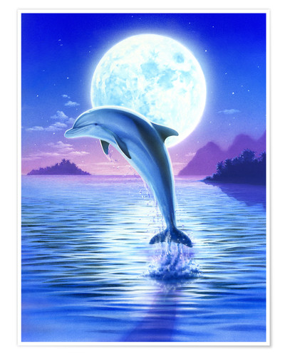 Premium-Poster Day of the dolphin - midnight