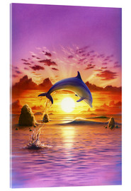 Robin Koni - Day of the dolphin - sunset