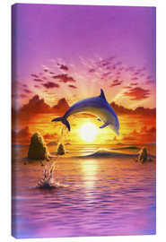 Leinwandbild  Day of the dolphin - sunset - Robin Koni