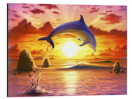 Alubild  Day of the dolphin - sunset - Robin Koni
