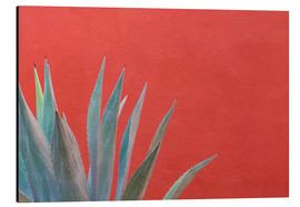 Alubild  Agave vor roter Wand - Don Paulson