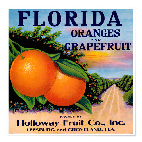 Premium-Poster Florida Oranges and Grapefruit