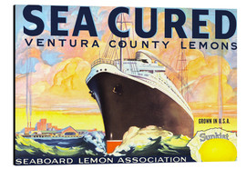 Alubild  sea cured - Advertising Collection