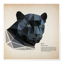 Premium-Poster fig6 Polygonpanther Quadrat