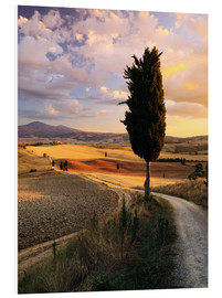 Forex  Abend im Val d'Orcia, Toskana - Matteo Colombo