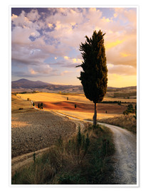 Premium-Poster Abend im Val d'Orcia, Toskana