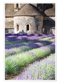 Poster  Senanque Abtei und Lavendel, Provence - Matteo Colombo