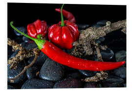 Forex  Chili & Habaneros - only red - Jürgen Seibertz